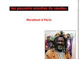 Voyant africain Paris